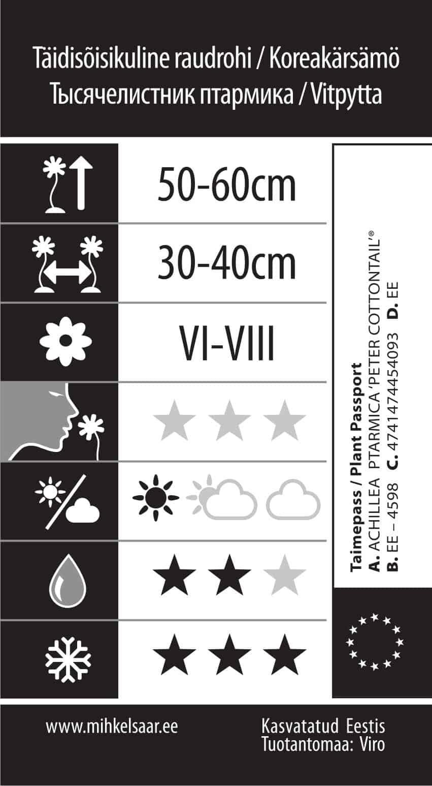 Etikett, Achillea ptarmica