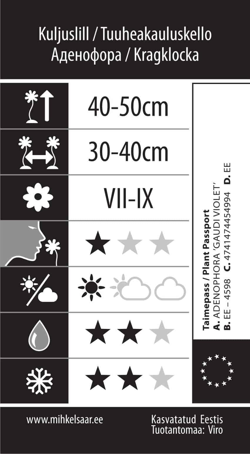 Etikett, Adenophora