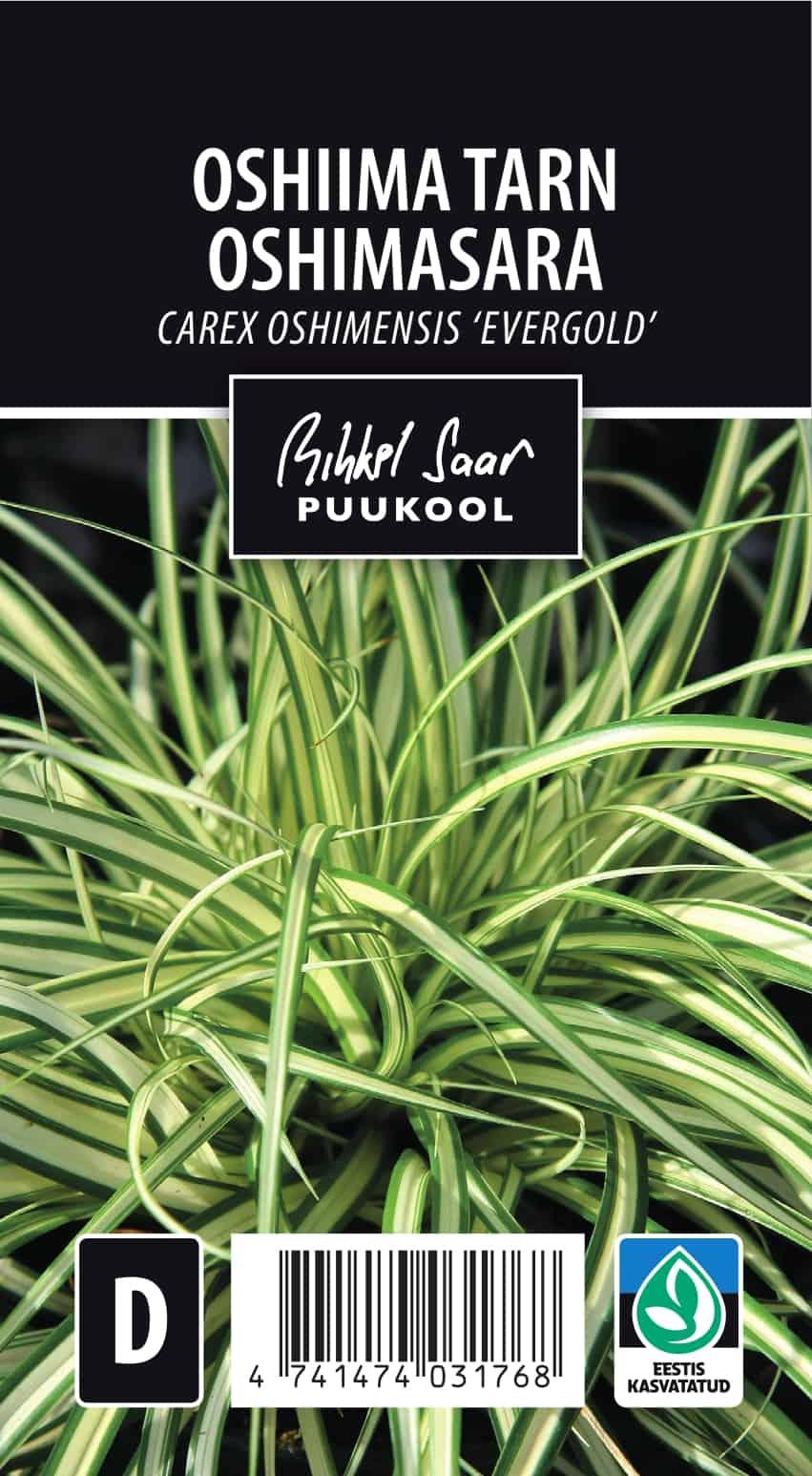 Etikett, Carex oshimensis
