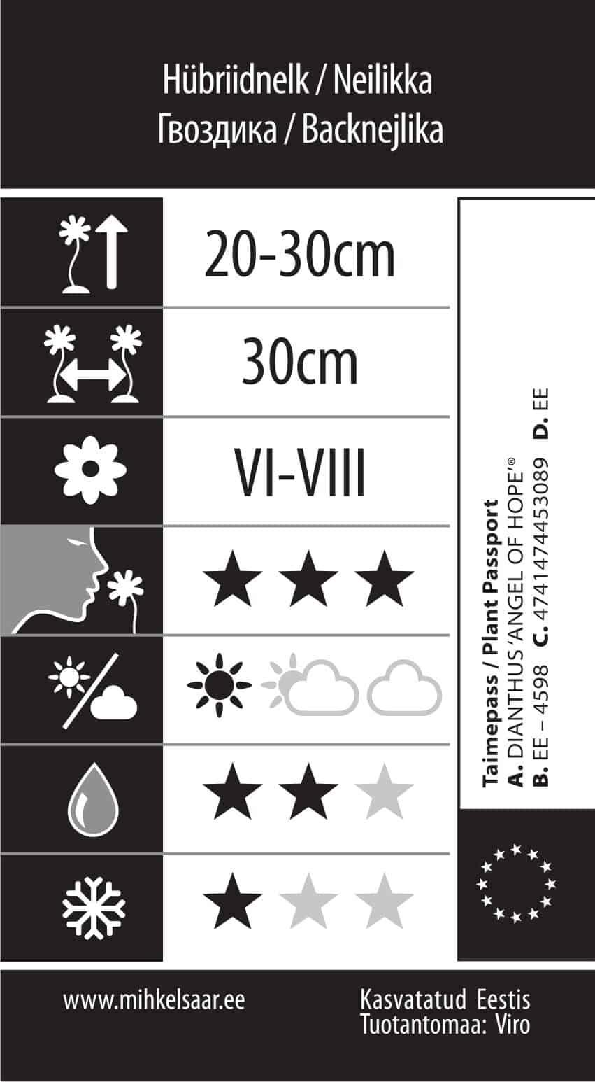 Etikett, Dianthus