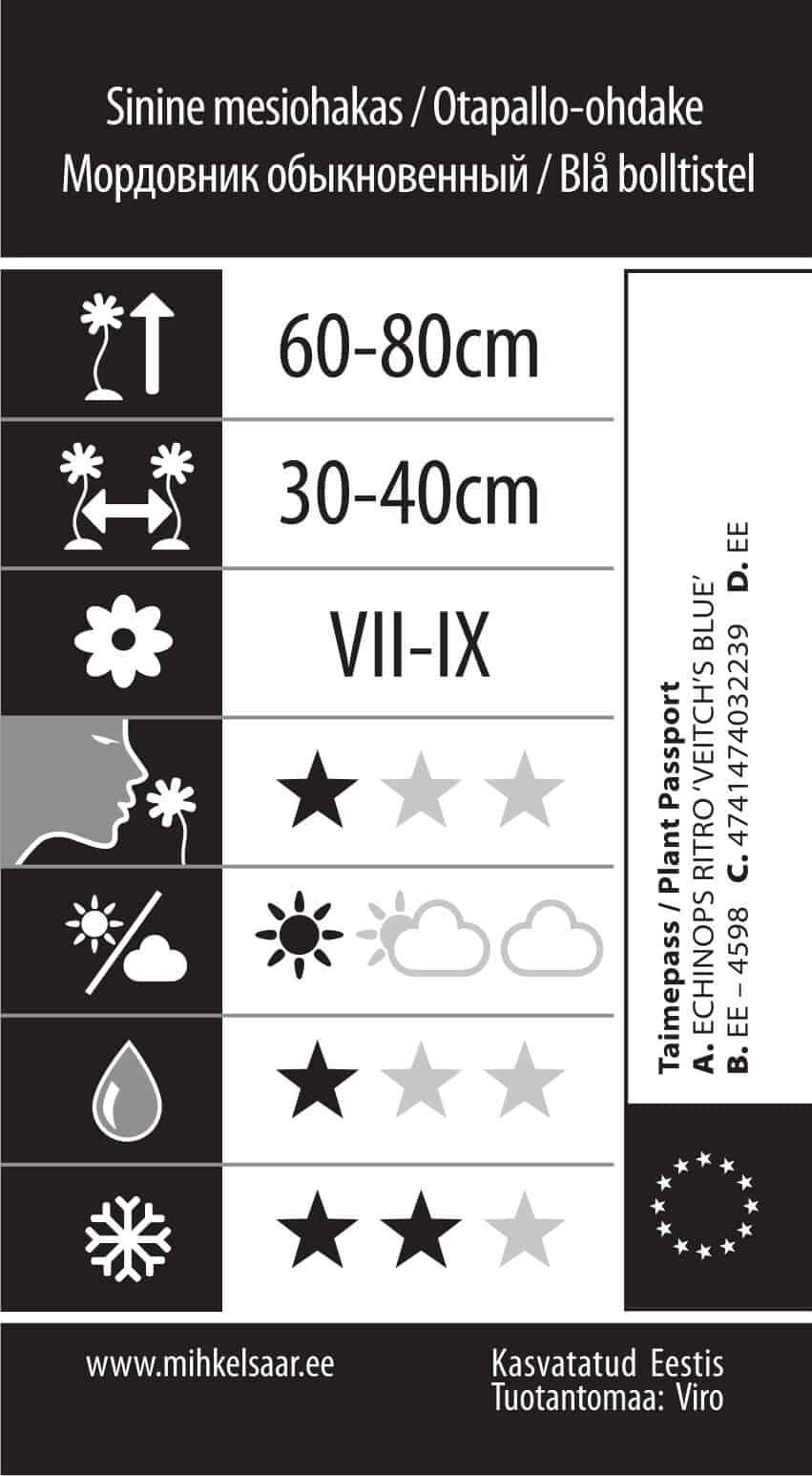 Etikett, Echinops ritro