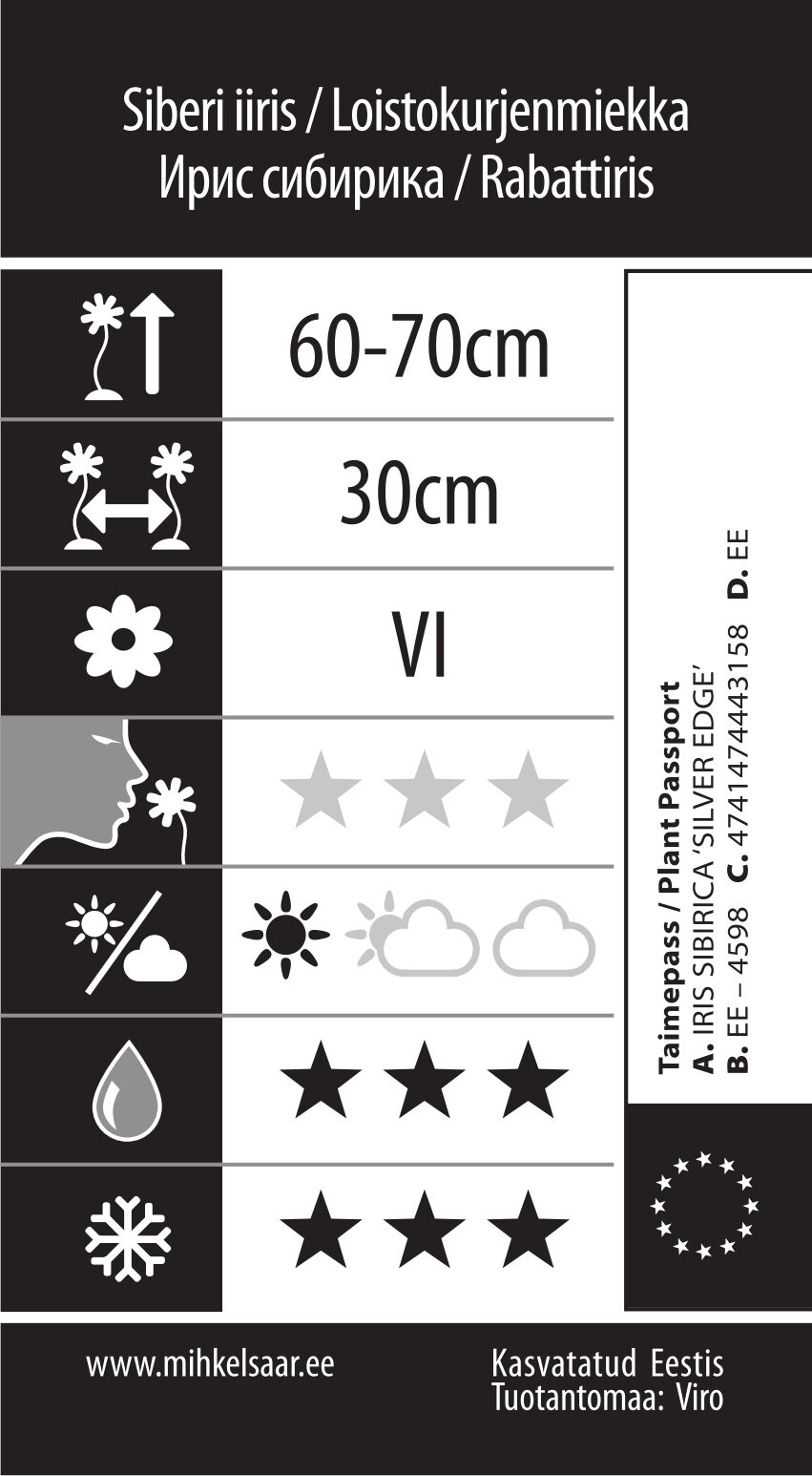 Etikett, Iris sibirica