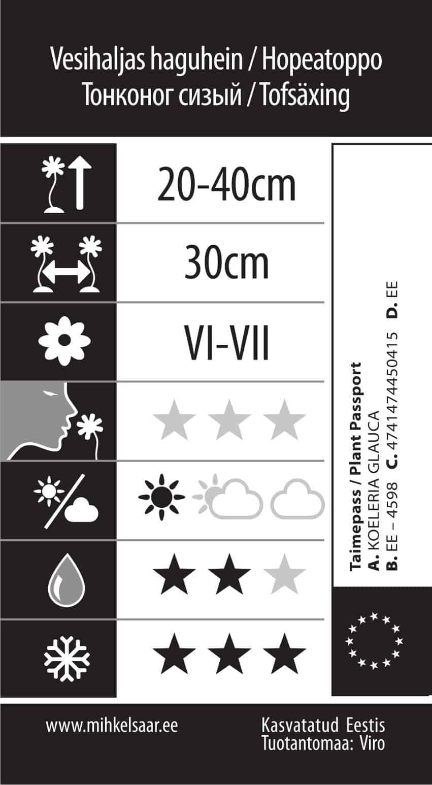 Etikett, Koeleria glauca