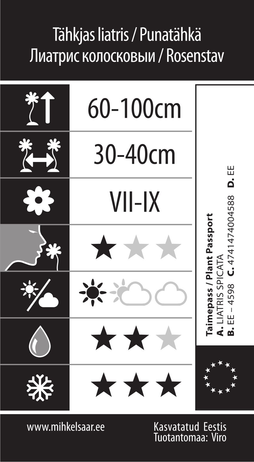 Etikett, Liatris spicata