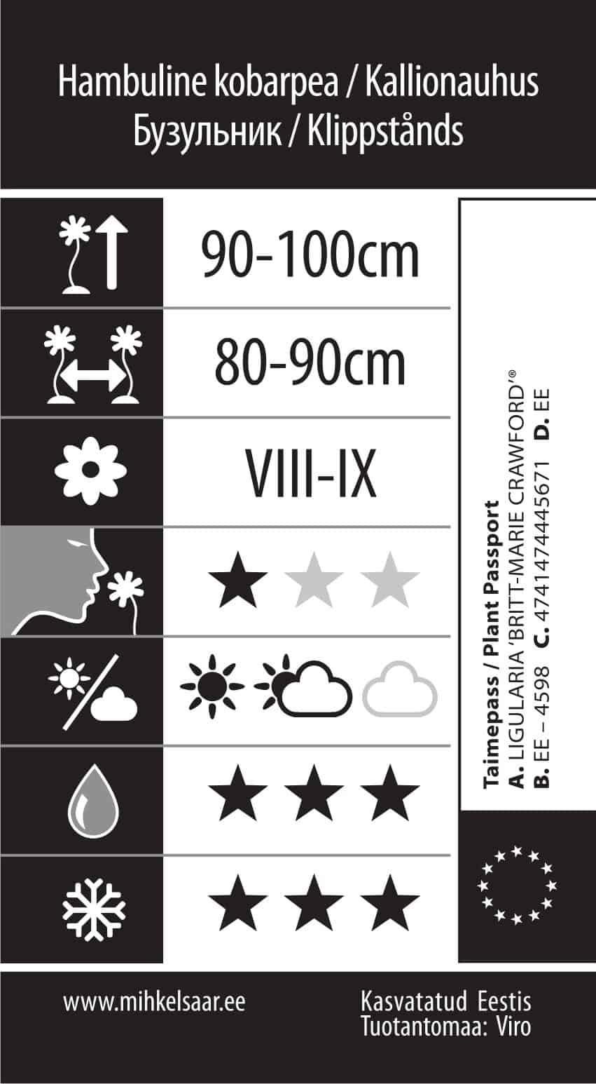 Etikett, Ligularia