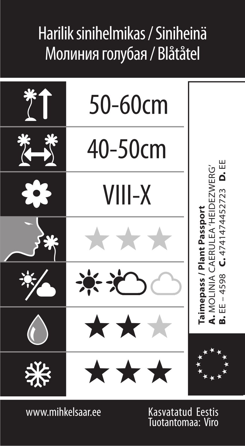 Etikett, Molinia