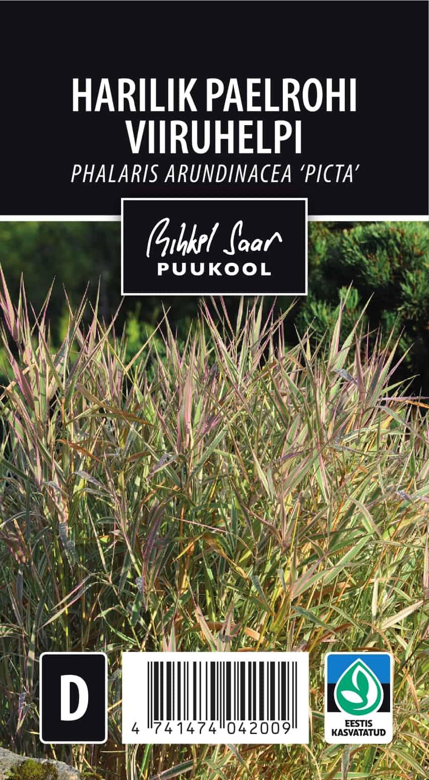 Etikett, Phalaris arundinacea