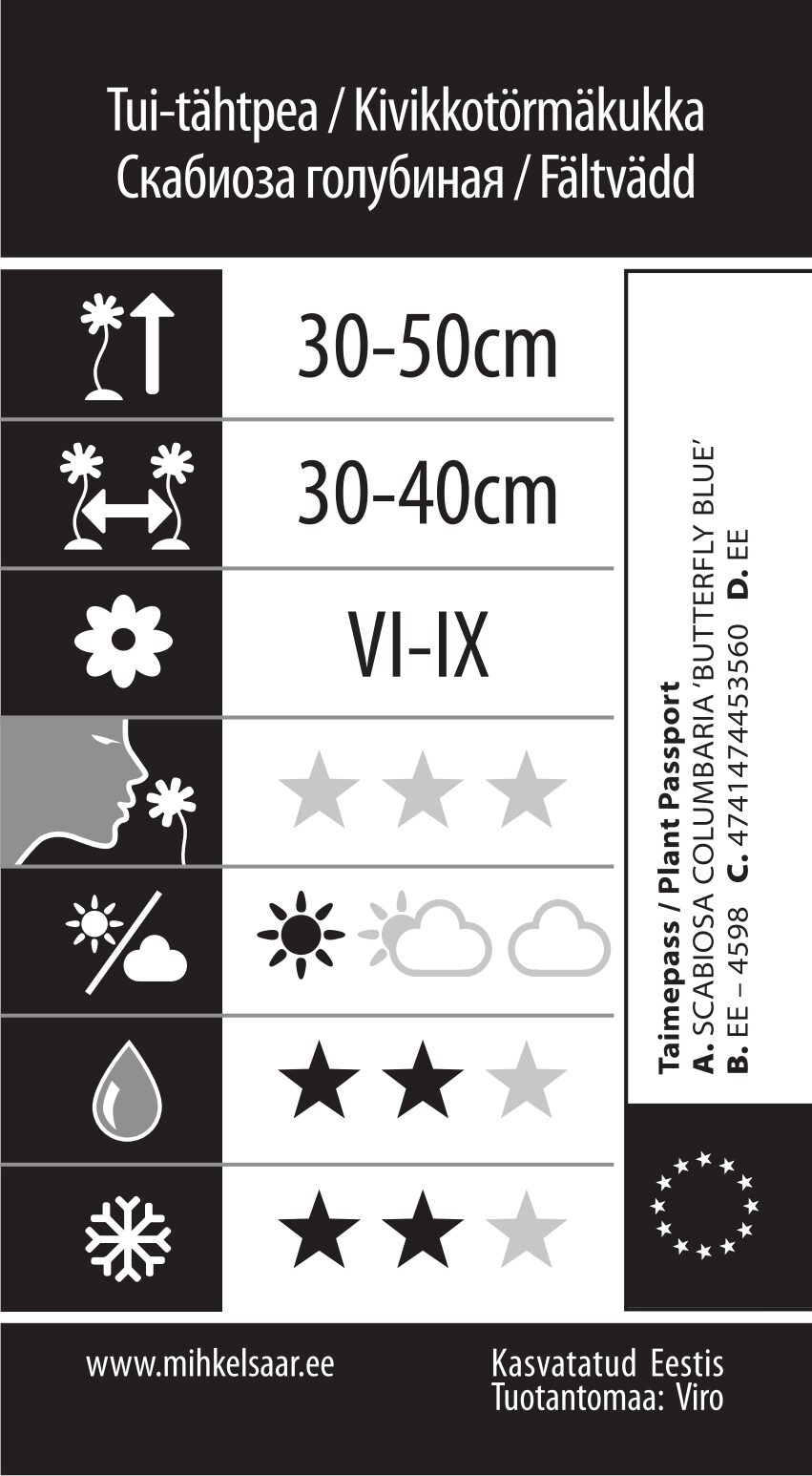 Etikett, Scabiosa columbaria