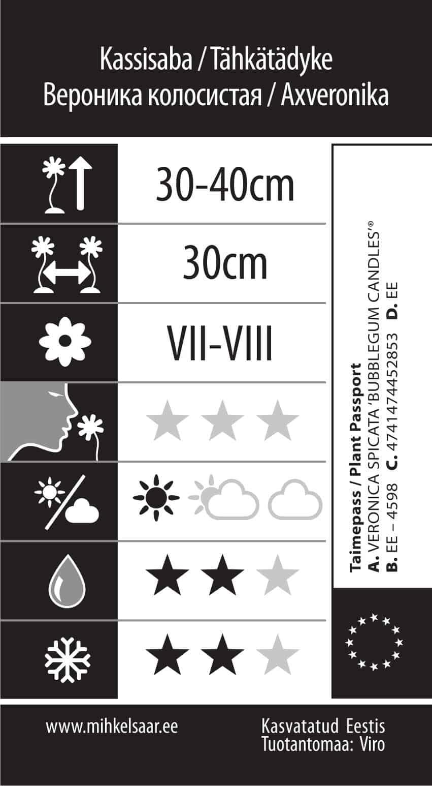 Etikett, Veronica spicata