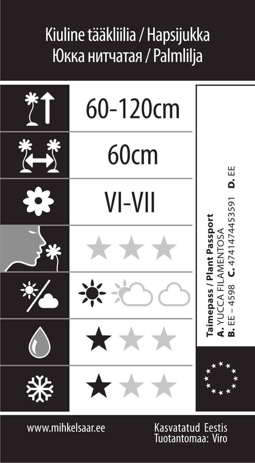 Etikett, Yucca filamentosa